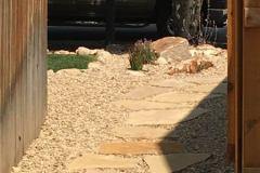 Flagstone-Stepper-Path-2-Buff