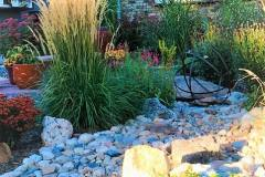 Yard-Elves-Xeriscape-3