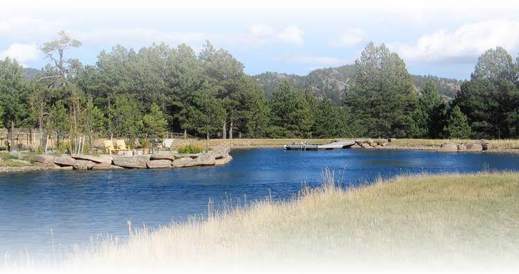 Yard-Elves-Aspen-Pond-Trout-Habitat-Project-2